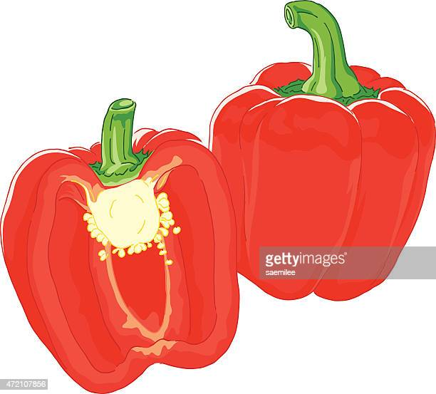 bell pepper - bell pepper stock illustrations, clip art, cartoons, & icons