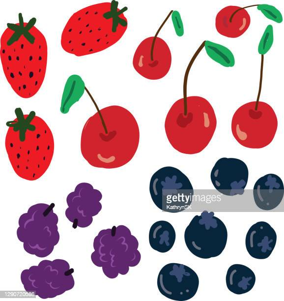 berries and cherries vector drawing - kathrynsk stock illustrations