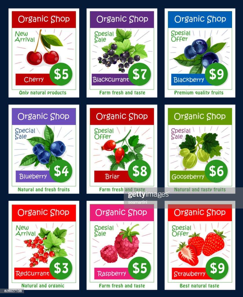 Berries and sweet garden fruits vector price cards