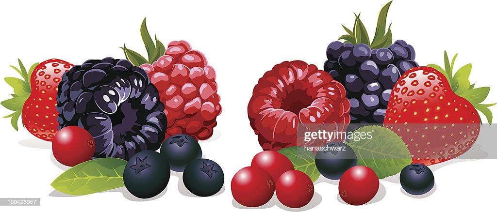 berries still life