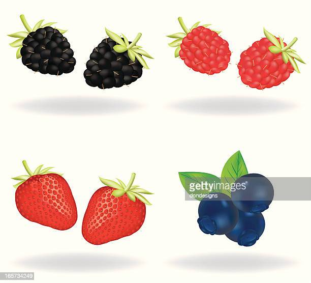 berries - raspberry stock illustrations, clip art, cartoons, & icons