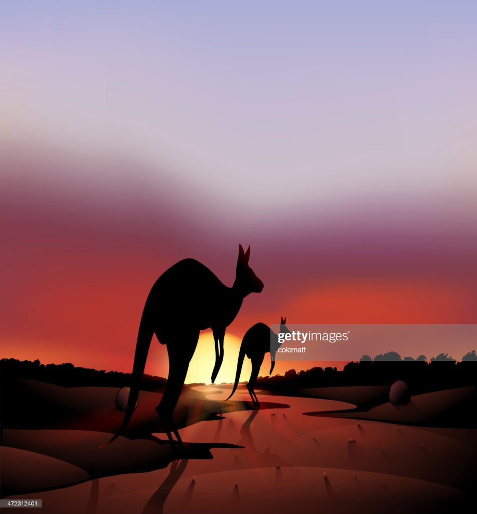 Big and a small kangaroo in the desert