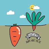 Big and small carrot and cartoon vector illustration