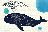 big blue whale and cosmic space theme art lettering inscriptions