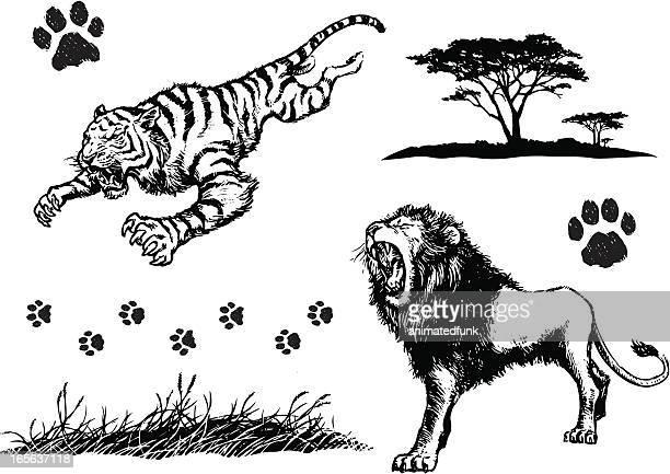 big cat elements - claw stock illustrations, clip art, cartoons, & icons