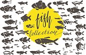 big fish collection doodle brush ink drawing set