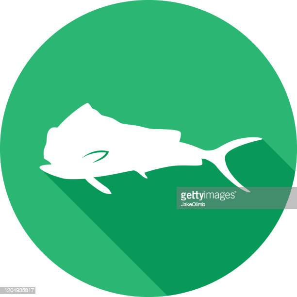 big fish icon silhouette 2 - dolphin fish stock illustrations