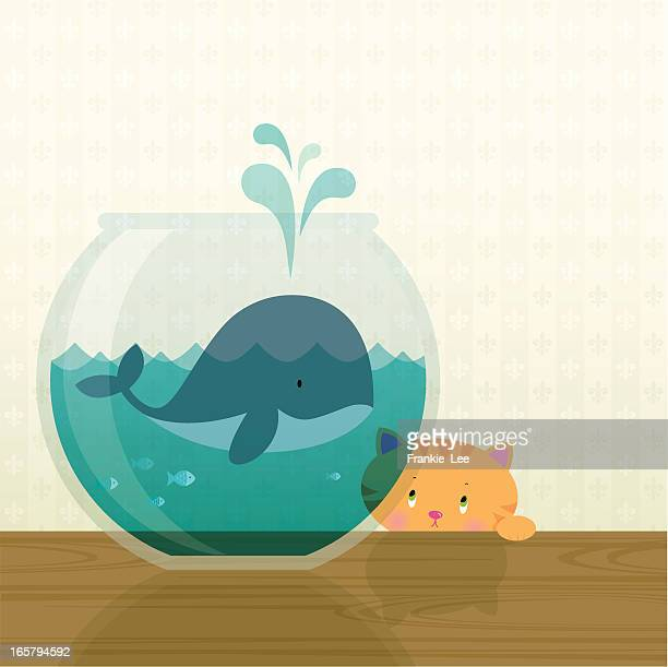 big fish in a small pond - whales stock illustrations, clip art, cartoons, & icons