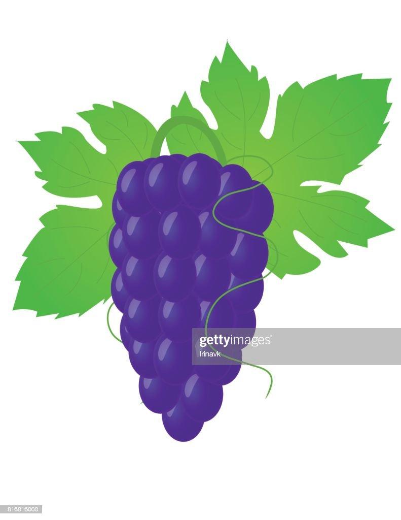 Big grape