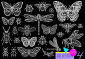 Big hand drawn line set of insects bugs, beetles, honey bees, butterfly moth, bumblebee, wasp, dragonfly, grasshopper.