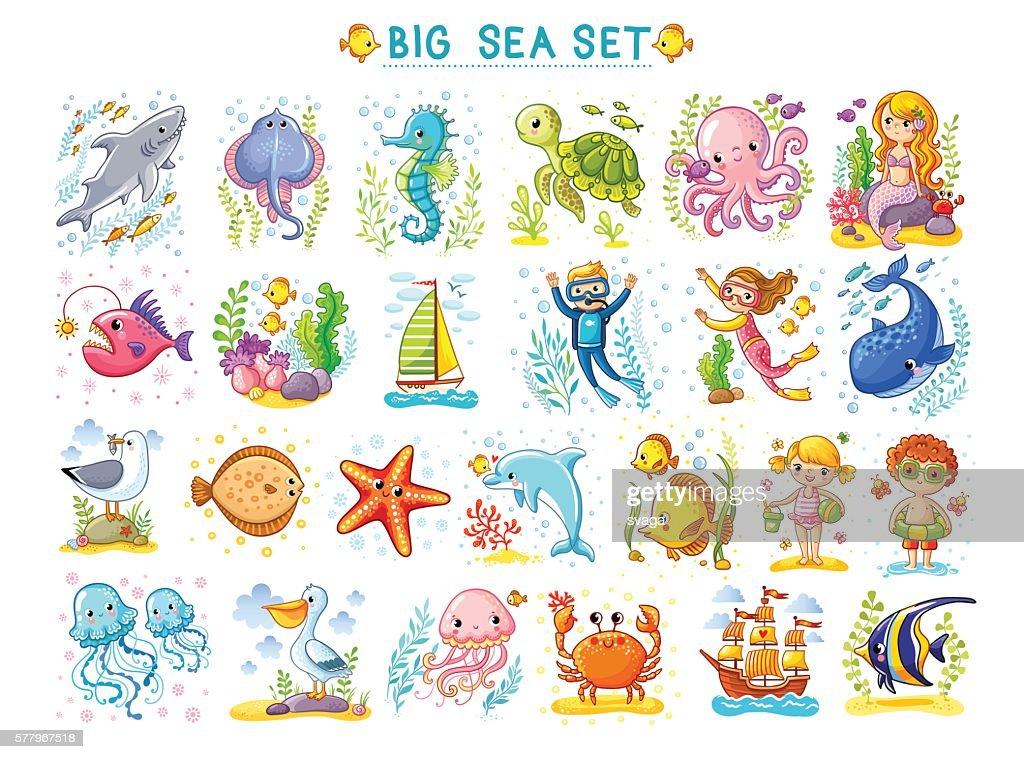 Big Marine set of vector illustration on the  theme.