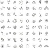 Big natural icon set