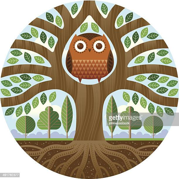 big owl in a tree - owl stock illustrations, clip art, cartoons, & icons