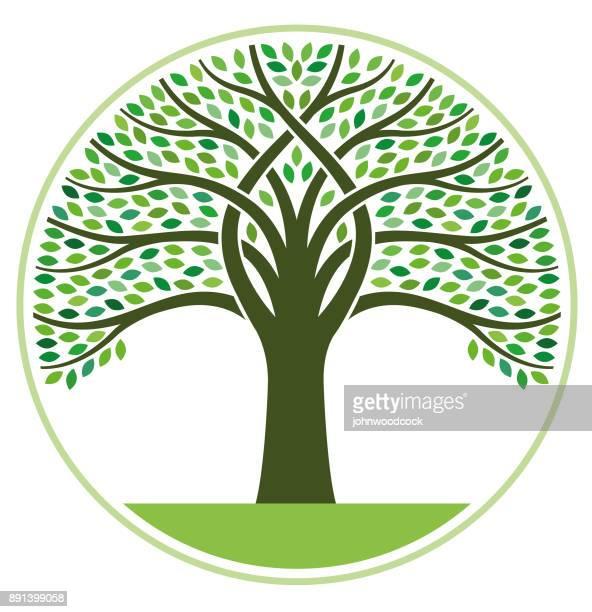 Big round tree illustration