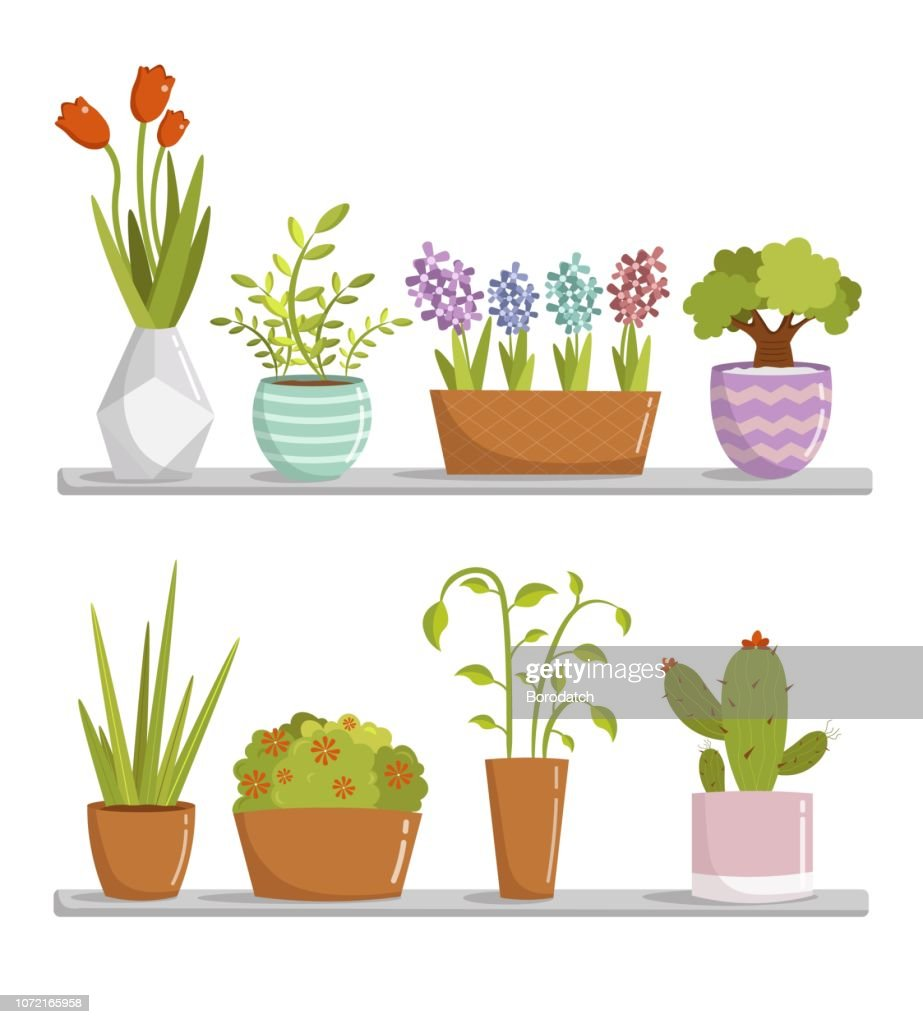 Big set cartoon room plant floral elements vector illustration