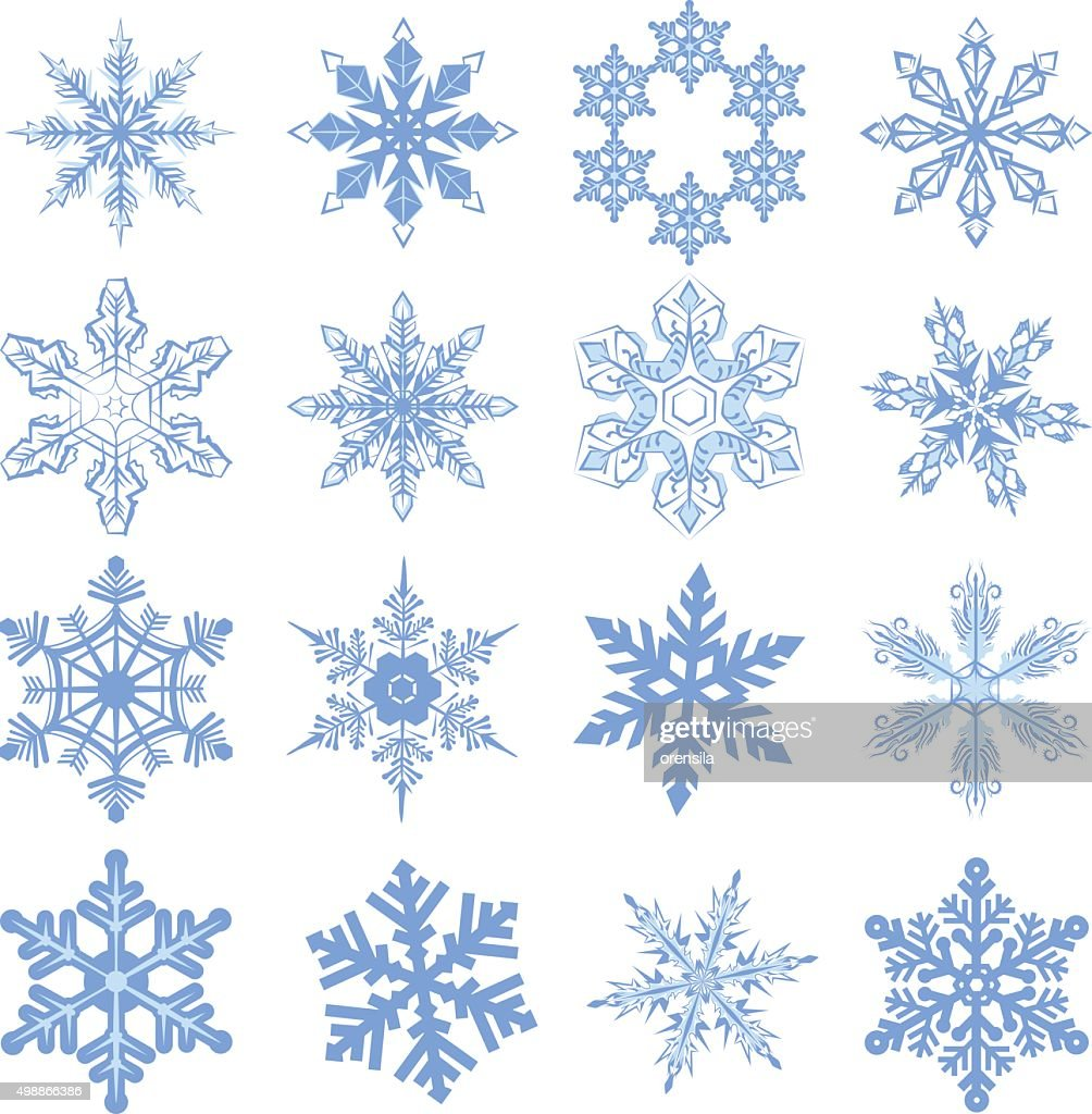 Big set Snowflake. Flake of snow