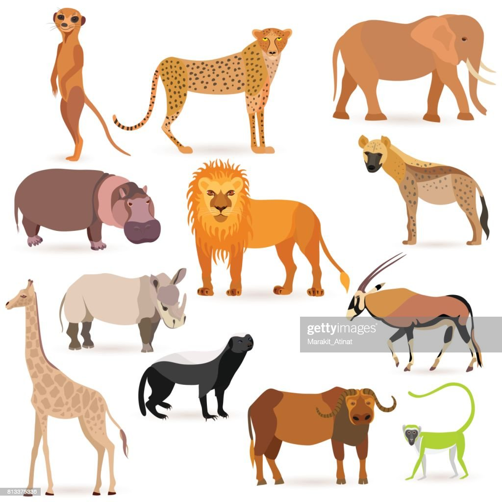Big Set with African Animals