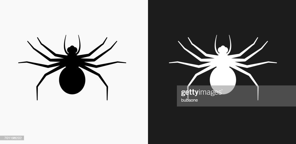 Big Spider Icon on Black and White Vector Backgrounds