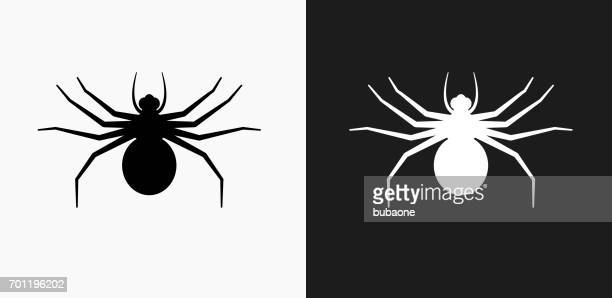 big spider icon on black and white vector backgrounds - spider stock illustrations