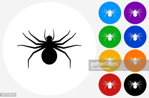 big spider icon on flat color circle buttons - spider stock illustrations