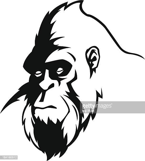 bigfoot face - bigfoot stock illustrations