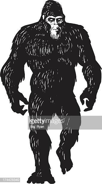 bigfoot sketch - bigfoot stock illustrations