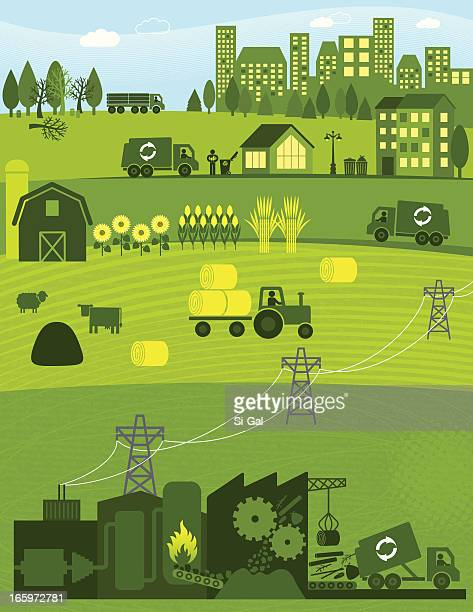 biomass - corn stock illustrations, clip art, cartoons, & icons