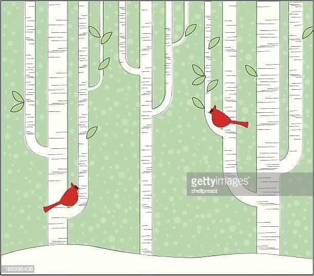 birch forest - cardinal bird stock illustrations, clip art, cartoons, & icons