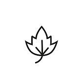Birch leaf. Flat thin line illustration