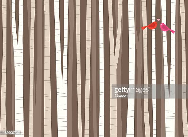 Birch Tree Bird Love