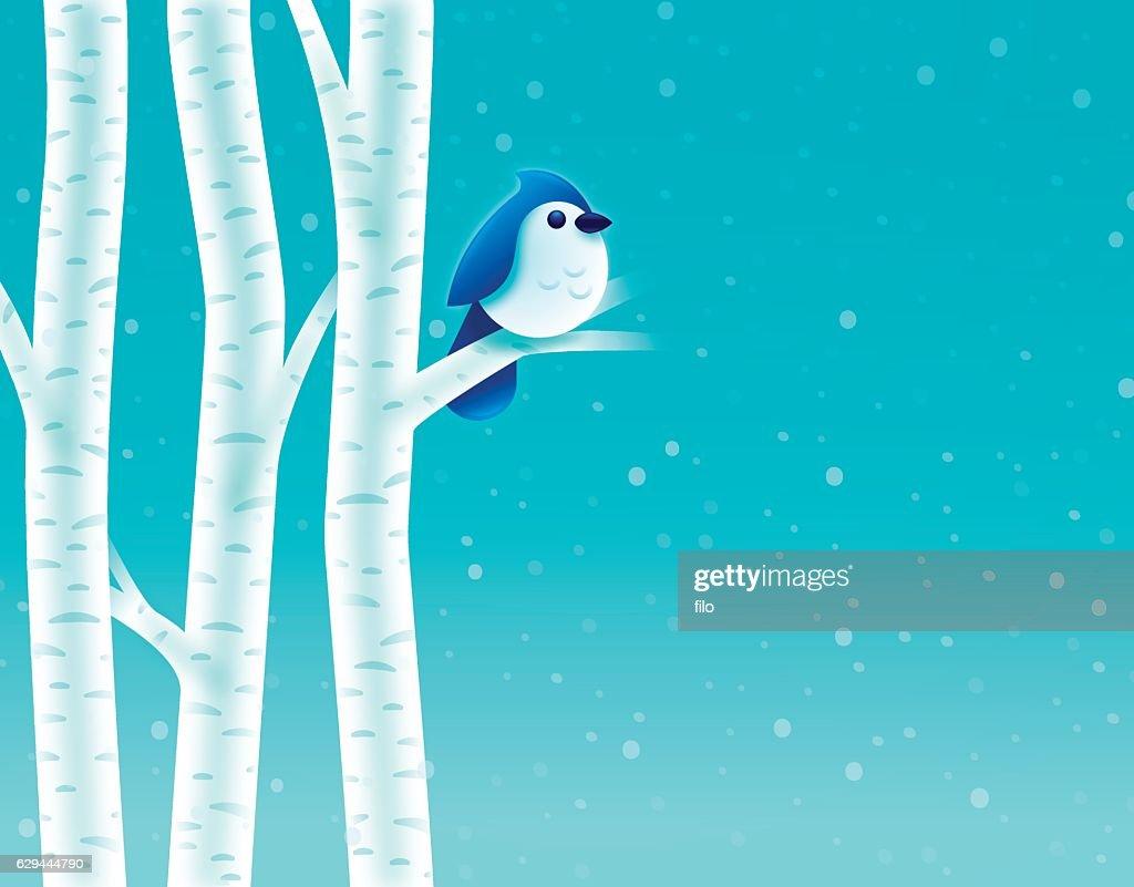 Birch Tree Winter Bird