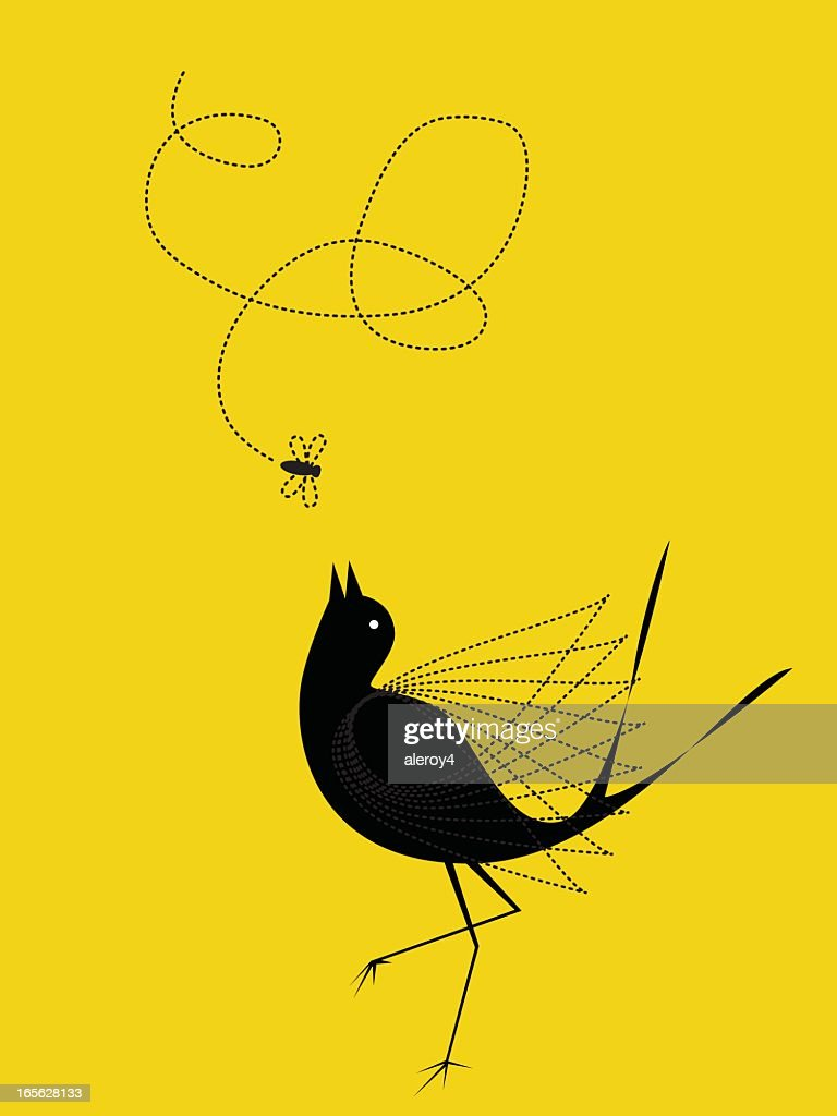bird and fly : stock illustration