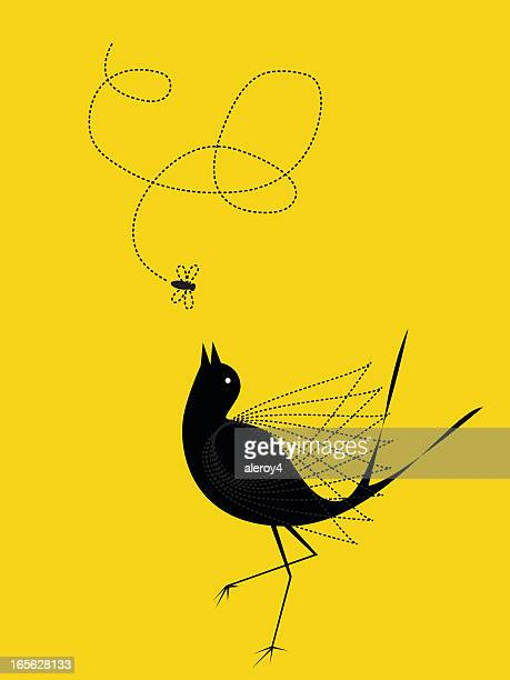 bird and fly