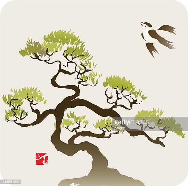 bird and the small pine tree or bonsai - bonsai tree stock illustrations