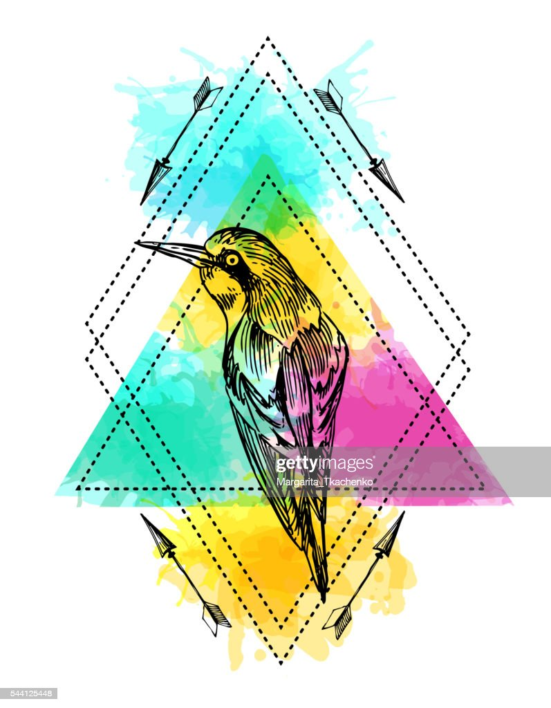 bird and watercolor