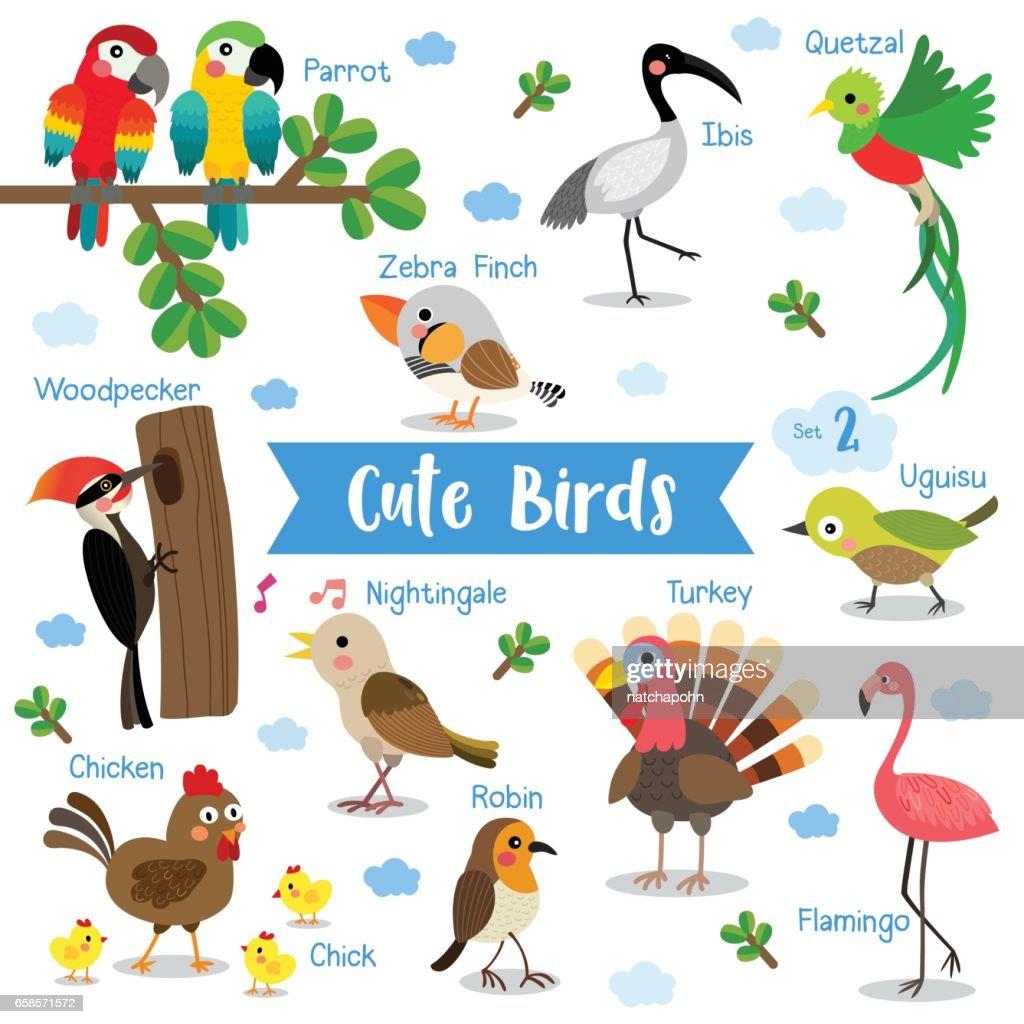 Bird Animal cartoon with animal name vector illustration. Set 2