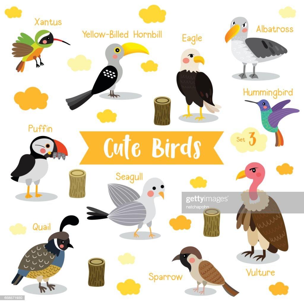 Bird Animal cartoon with animal name vector illustration. Set 3