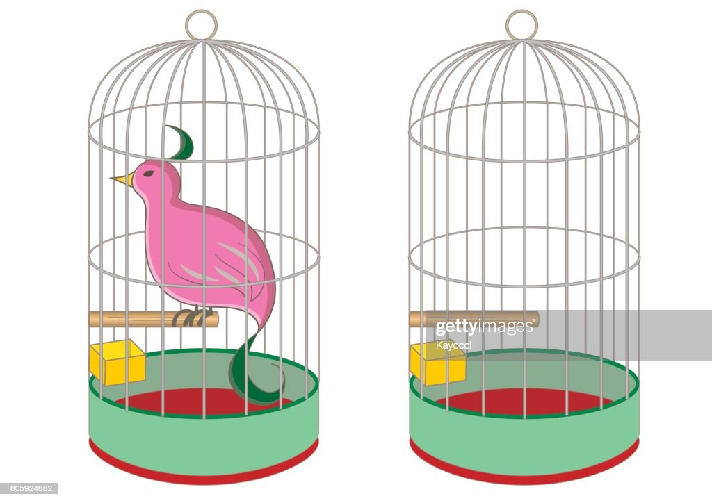 bird cage and rare bird
