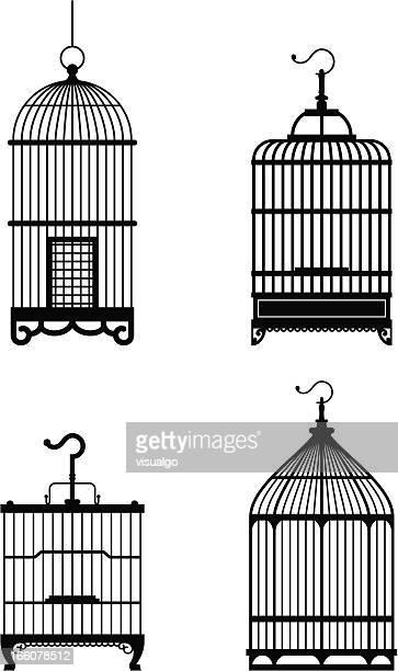 bird cage - birdcage stock illustrations, clip art, cartoons, & icons
