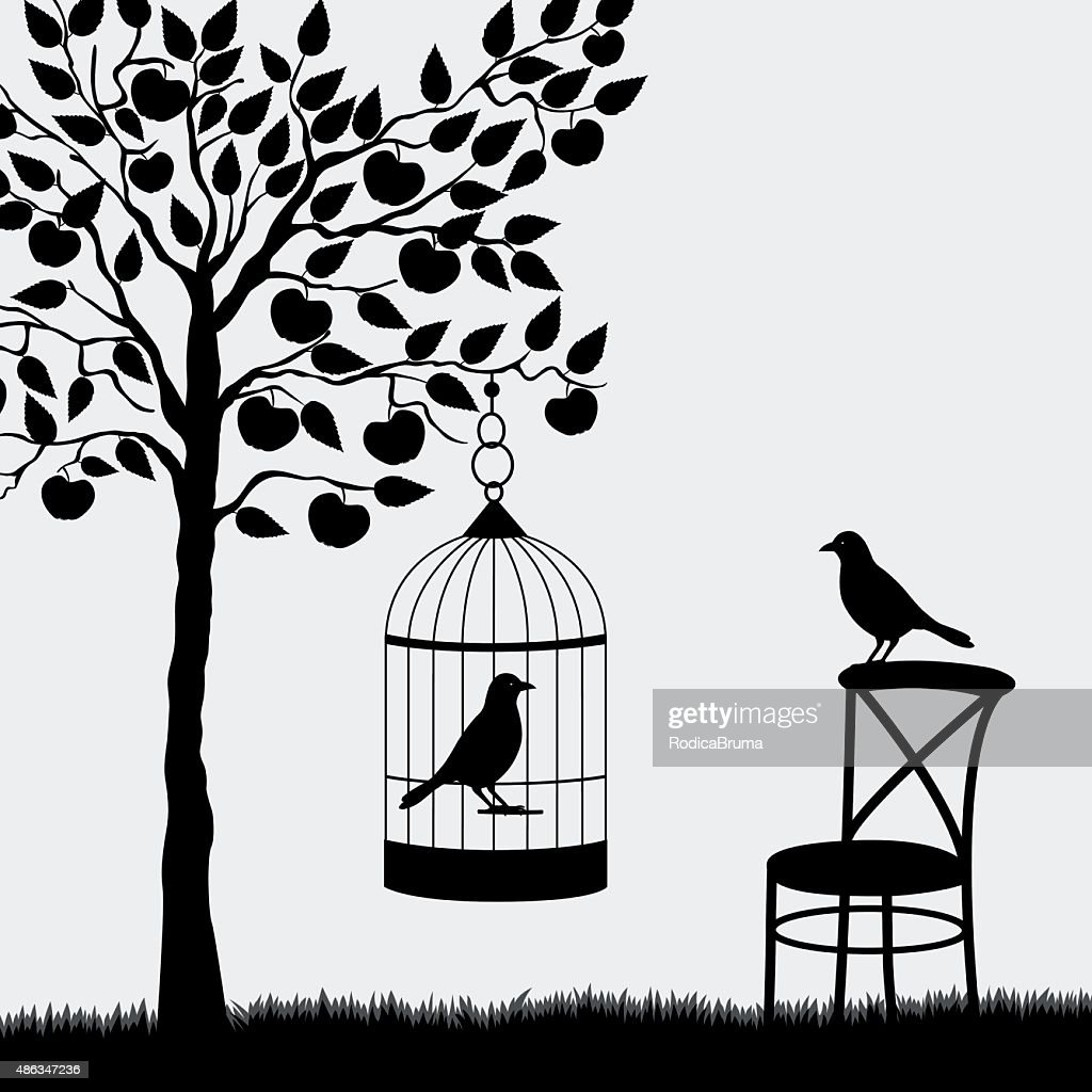 Bird cage with bird hanging from apple tree
