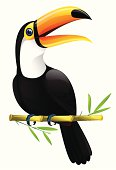 A bird called a toucan sitting in a twig