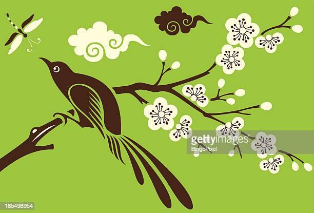 bird, dragonfly & cherry blossom - magpie stock illustrations