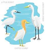 Bird Egret Set Cartoon Vector Illustration