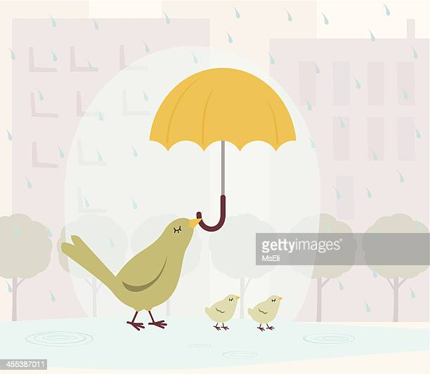 bird family in the rain - puddle stock illustrations, clip art, cartoons, & icons