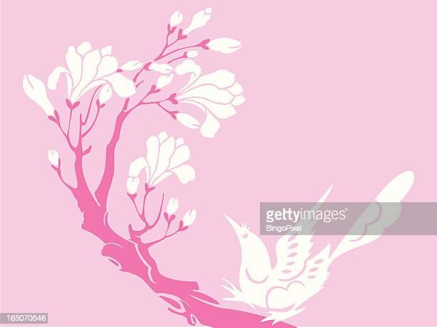 bird & flower - magpie stock illustrations