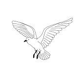 bird flying. illustration vector. hand drawing line art of animal. bird isolated line on white background. symbol of freedom. tattoo design.