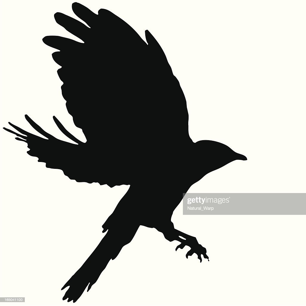 Bird Flying Silhouette 09 Vector Art
