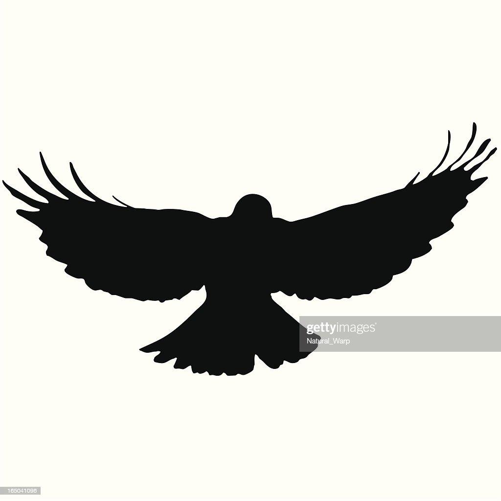 Bird Flying Silhouette 10 Vector Art