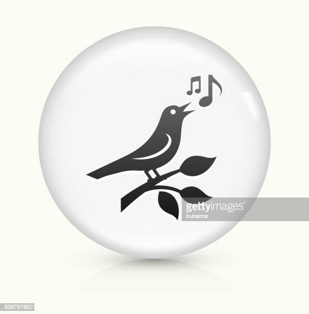 ilustrações de stock, clip art, desenhos animados e ícones de ave branca de vetor arredondado ícone num botão - canto de passarinho