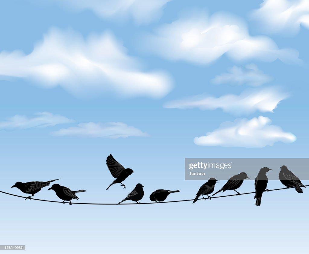 Bird icon set. Sky background. Vector illusrtation